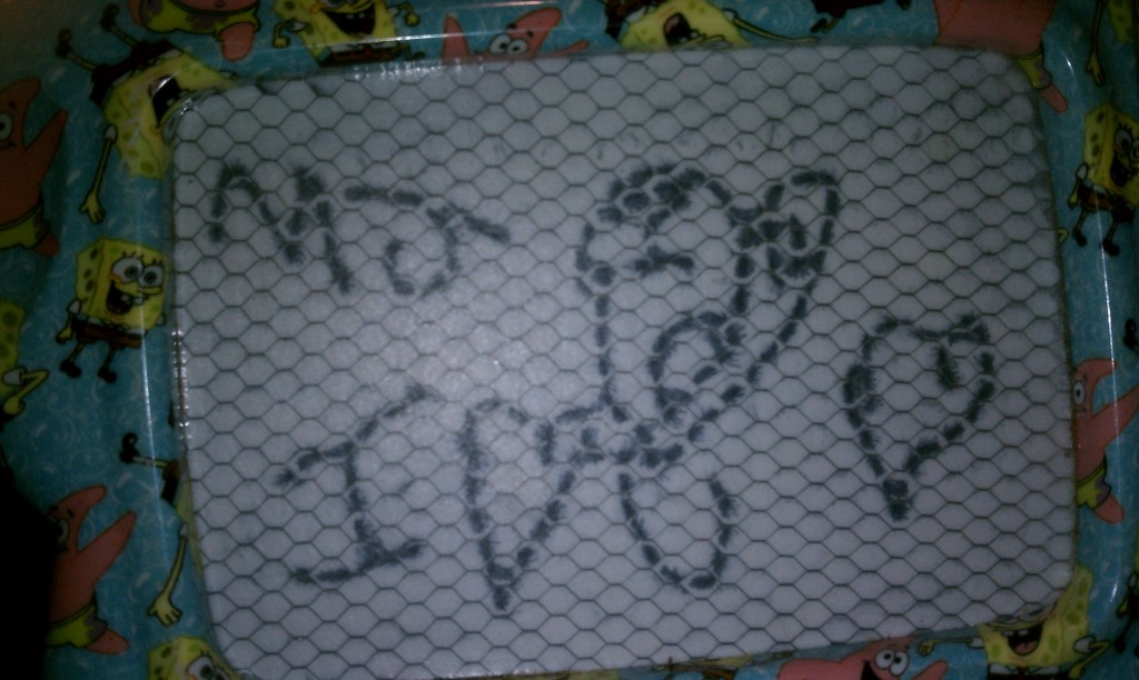 "a ""mini-magna-dodle"" love note from MJ in the car"